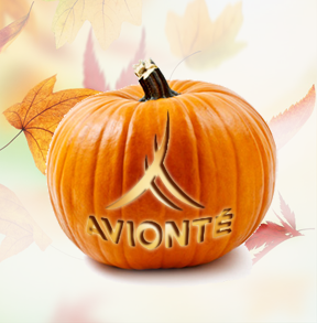 Avionte Fall Webinars and Trainings